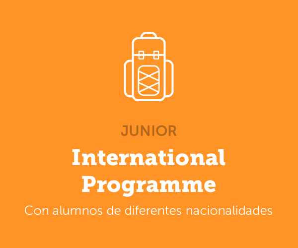 International Summer Programme