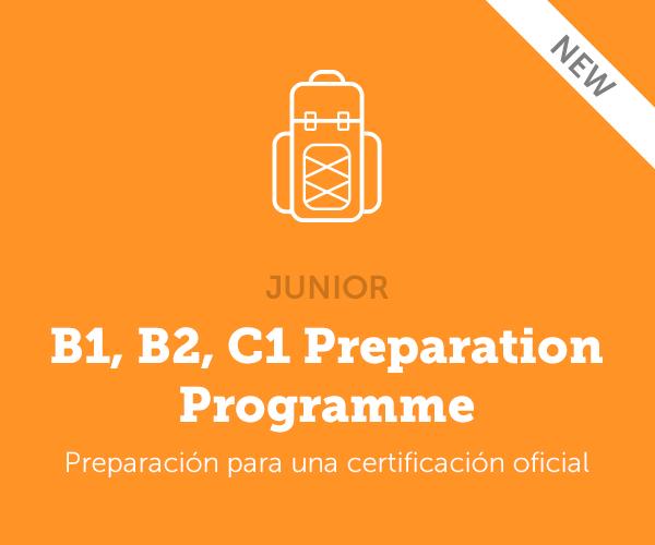 B1, B2, C1 Preparation Programme